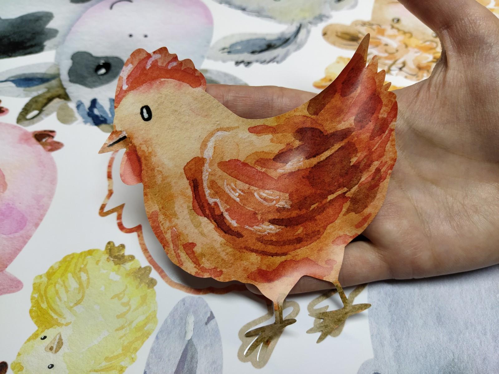 naklejanie kura.jpg